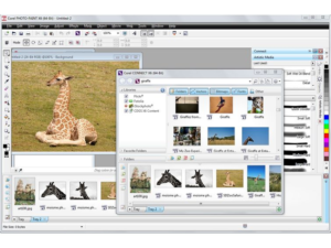 Corel draw free download full version with crack for windows 7